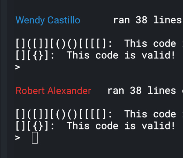 Code being run against automated test cases